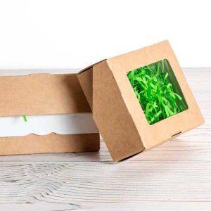 Эко-коробочка