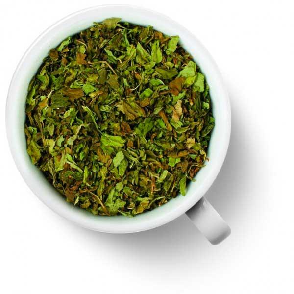 Экстракт зеленого чая (глицериновый)